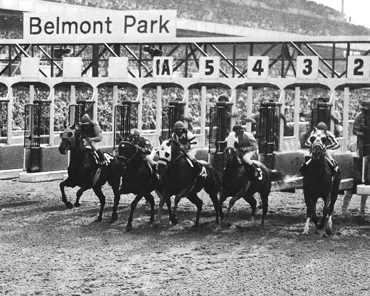 Image result for belmont secretariat sham