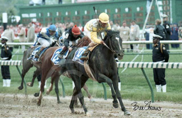 Southern California's Greatest Racehorses: Sunday Silence ...